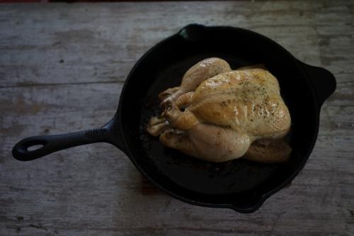 chicken-104